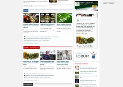 cannabisterapeutica.info